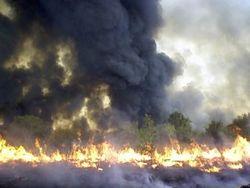 Clarkes Fire 2